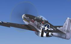 Hun Hunter TEXAS, a  P-51D skin made for A2A P-51D by Tom Weiss , hosted at www.lockonfiles.com