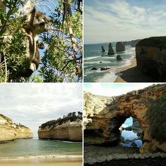 Road Trip_Syd-->Perth_Day8_Great Ocean Road_Koalas on the road_12Apostles_Lorch Ard Gorge_De Grotto_Warrnambool_-1650km #greatoceanroad #koala #12apostles #twelveapostles #lorchardgorge #degrotto #warrnambool #victoria #australia #travelling #exploring #exploringaustralia #discovering #roadtrip #volvo #withyou #nofilter #picoftheday #picofday #summarizing #2yearswithyou #thankful #testimo by mionics