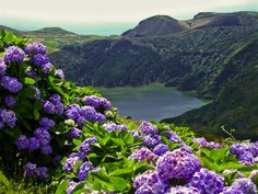 The Azores.....where my grandparents on my Dad's side  immigrated from. Beautiful!!!