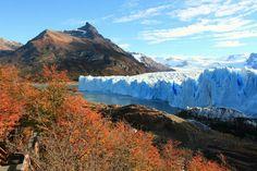 Glaciar moreno Patagonia, Outdoor, Santa Cruz, El Calafate, Brunettes, Cities, Argentina, Outdoors, Outdoor Games