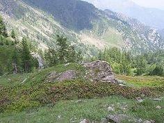 Giardino Botanico Alpino BRUNO PEYRONEL - Bobbio Pellice