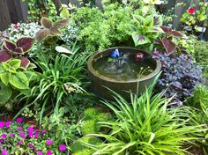 Perfect combination for a shady nook...lush perenials, small water feature, and a reason to relax.