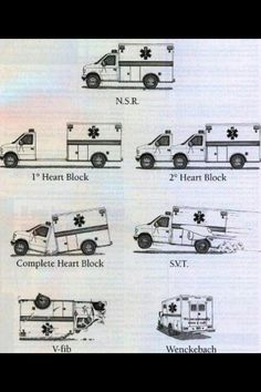 and cardiology related! As a paramedic cardiology has always facinated me. If you've got a strange 12 lead or cardiology related call submit it! Paramedic Humor, Ems Humor, Medical Humor, Nurse Humor, Medical School, Paramedic Student, Flight Paramedic, Medical Drama, Medical Facts