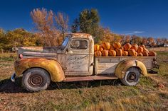 The Great Pumpkin Truck by Fort Photo, via Flickr
