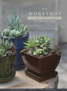 Free Workshop: Succulent Gardens and Wreaths. Click the image to register online or call 419.865.6566
