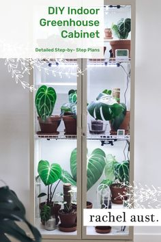 As one of my lockdown projects I wanted to build one of these Ikea Milsbo cabinets. Learn step-by-step the plans I used to assemble this DIY indoor greenhouse, including the supplies and materials you will need, what plants to house in your greenhouse cabinet, and how to set up your IKEA greenhouse cabinet from the humidity, lighting, fan and more. Read more to learn how to build your own indoor greenhouse. Ikea Plants, Indoor Plants, Indoor Garden, Indoor Greenhouse, Paludarium, Vivarium, Garden Party Decorations, Room With Plants, Plant Lighting