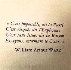 J'aime cette belle citation de l'écrivain William Arthur ward. Elle résume parfaitement la vie, ses doutes, ses peurs, ses désirs et ses forces… :)