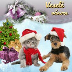 Pejsek a kočička Merry Christmas, Santa, Teddy Bear, Toys, Merry Little Christmas, Activity Toys, Happy Merry Christmas, Toy, Wish You Merry Christmas
