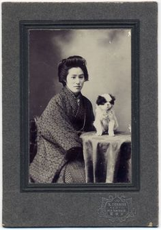 ea17 1900s Japan Old Photo Young Woman with Japanese Chin Puppy / Spaniel Dog
