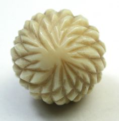 Antique Vegetable Ivory Button w/ Carved Ball Design