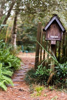 nice rustic scene, the path, ferns, fence, birdhouse on wood pole, and the mystery beyond