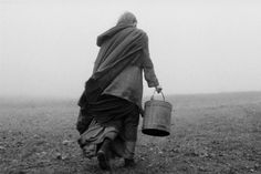 """A scene from Bela Tarr's    """"The Turin Horse"""""""