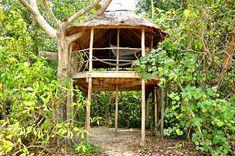 Eco-friendly Treehouse, บ้านต้นไม้