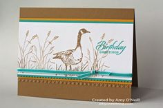 wetlands goose