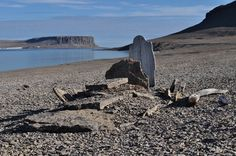 beechey island - Google Search