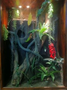 HP Customs Jungle Theme Reptile Enclosure   https://www.facebook.com/pages/HP-Customs-Custom-Reptile-Enclosures/572704122760765