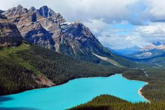 Peyto Lake, located in the Banff National Park in Alberta, Canada, is famous for its turquoise waters. Many factors can influence a lake's color, including type and amount of algae growth, water temperature and mineral runoff from surrounding mountains.
