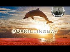 #OpKillingBay - Stop the killing of Dolphins at Taiji Japan!