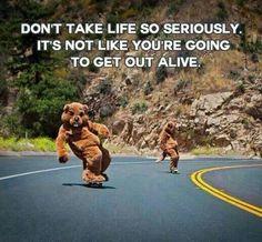 Zie jij beren op de weg? Het gaat/is altijd anders dan je verwacht.