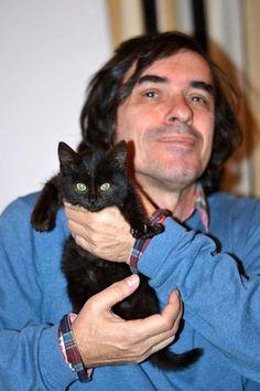 Content, Cats, Animals, Gatos, Animales, Animaux, Animal, Cat, Animais