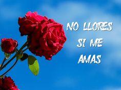 #SanAgustín #poema #poesia