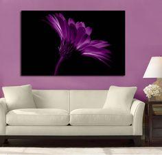 Fire Daisy Purple