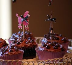 French chocolate cupcakes