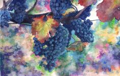 grapes by Ryzhaia on DeviantArt