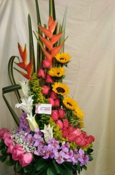 Productos – Página 2 – Floristeria la Maria Floral Arrangements, Bouquet, Tropical, Fresh, Table Decorations, Bridal, Garden, Plants, Ideas