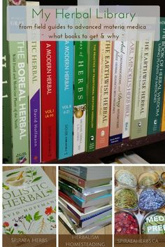 Herbal Medicine My Herbal Library: From field guides to advanced material medica Holistic Remedies, Natural Health Remedies, Herbal Remedies, Homeopathic Remedies, Healing Herbs, Medicinal Plants, Natural Healing, Natural Herbs, Holistic Healing