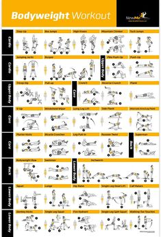 "Amazon.com : Bodyweight Exercise Poster - Total Body Workout - Personal Trainer Fitness Program - Home Gym Poster - Tones Core, Abs, Legs, Gluts & Upper Body - Improves Training Routine - 20""x30"" : Sports & Outdoors"