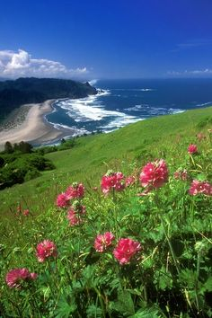 Cascade Head, Oregon Coast sits North of Lincoln City and South of Neskowin. by Eva0707