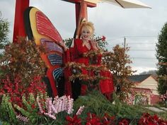 """CELEBRITY COLLECTOR - DOLLY PARTON - BUTTERFLIES  Country star Dolly wrote the song Love Is Like A Butterfly and also collects them. She said: """"They are just so gentle and colorful and spiritual, they just kind of became my little emblem."""""""