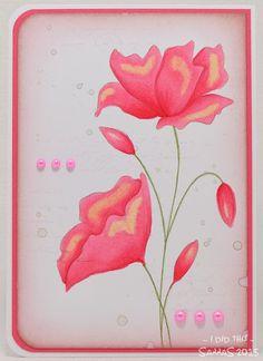 korttipaja SannaS: kukkia pinkisti...