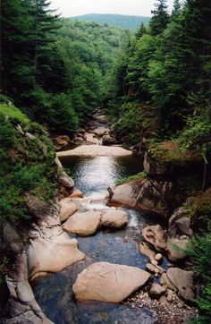 Flume Gorge, New Hampshire, White Mountain,  National Park • photo by Ashleigh Bennet 2008-01 via flickr 2245614260