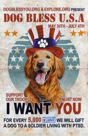 """Please support Dog Bless You! For each 5000 """"Likes"""" to their Facebook page they will donate a dog to a soldier living with PTSD."""