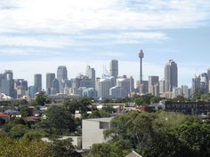 Located on the edge of the central business district, Rydges Camperdown Sydney is adjacent to the Royal Prince Alfred Hospital and Sydney University. Moore Park, Darling Harbour, Central Business District, Royal Prince, At The Hotel, The Other Side, Hotels Near, Shopping Center, Public Transport
