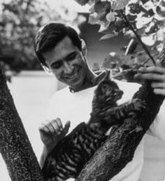 Cat lover Anthony Perkins, of 'Psycho' fame, with one of his feline friends. Anthony Perkins, Crazy Cat Lady, Crazy Cats, I Love Cats, Cool Cats, Celebrities With Cats, Celebs, Men With Cats, Son Chat