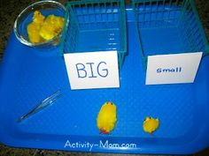 Fuzzy Chick Size Comparison / Sort (see site for other Easter Tray ideas)
