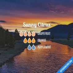 Sunny Citrus - Essential Oil Diffuser Blend