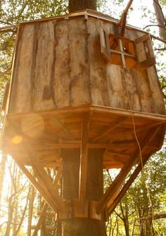 Chester Treehouse