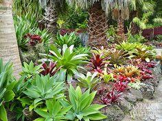 Totara+Water+Gardens+1.JPG (664×498)
