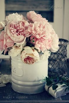 cabbage roses in white can