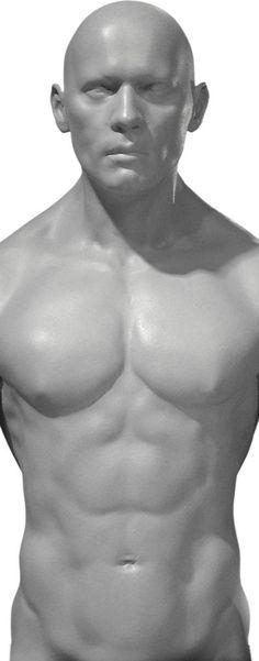 Male torso 3 piece magnetic set