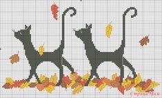 black cats on fall leaves