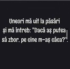 Pe cine m-as caca daca as fi pasare? Really Funny, The Funny, Funny Texts, Funny Jokes, Son Luna, Marvel Funny, True Words, Funny Moments, Funny Photos