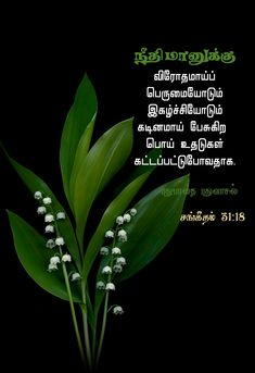 Bible Verses Quotes Inspirational, Bible Quotes, Tamil Bible Words, Jesus Photo, Plant Leaves, Religion, Amen, Bible Scripture Quotes, Biblical Quotes