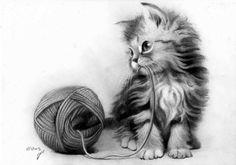 Cat drawing, cool art drawings, kitten drawing, beautiful drawings, a Cool Pencil Drawings, Cute Animal Drawings, Animal Sketches, Amazing Drawings, Beautiful Drawings, Pencil Art, Art Sketches, Realistic Cat Drawing, Kitten Drawing