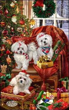 "Maltese Christmas Holiday Cards are 8 1/2"" x 5 1/2"" and come in packages of 12 cards. One design per package. All designs include envelopes, your personal message, and choice of greeting. Select your greeting from the drop-down menu above.Add your personal message to the Comments box during checkout."