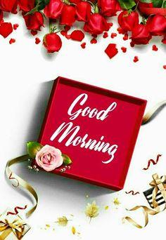 Good Morning Rose Images, Good Morning Flowers Pictures, Love Good Morning Quotes, Good Morning Beautiful Pictures, Good Morning Roses, Good Morning Cards, Good Morning Picture, Good Morning Friends, Good Morning Greetings